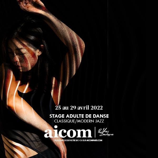Stage Adultes Danse AICOM